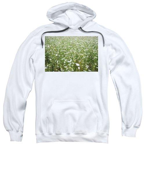 Field Of Queen Annes Lace Sweatshirt