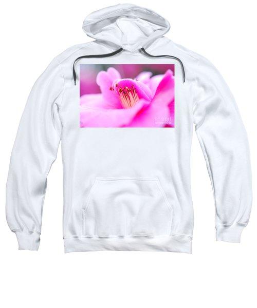 Fine Art- Pink Camellia Sweatshirt