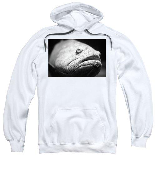 Fish Face Sweatshirt