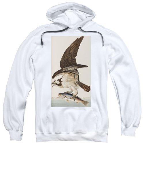 Fish Hawk Or Osprey Sweatshirt