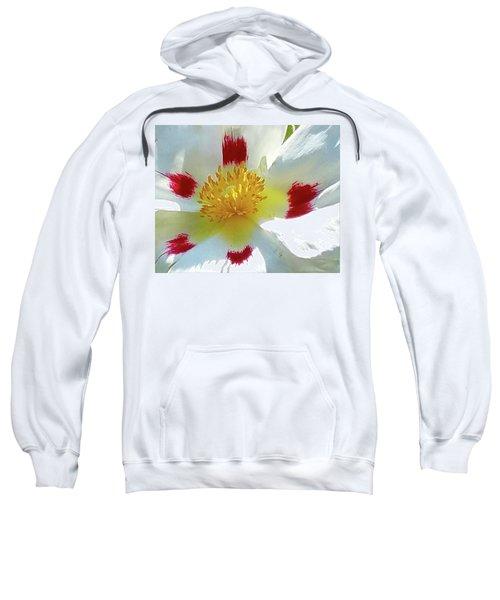 Floral Impressions Sweatshirt