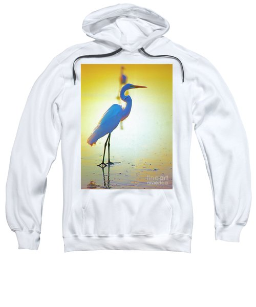 Florida Atlantic Beach Ocean Birds  Sweatshirt