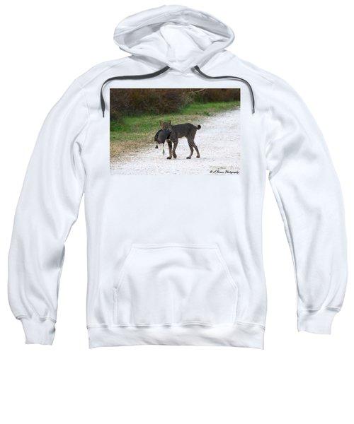 Florida Bobcat Catches An Evening Snack Sweatshirt