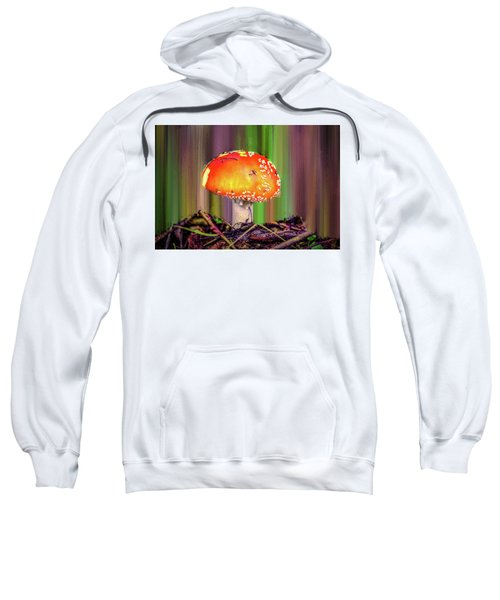 Fly Agaric #g7 Sweatshirt