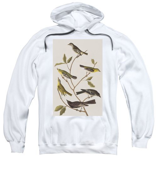 Fly Catchers Sweatshirt by John James Audubon