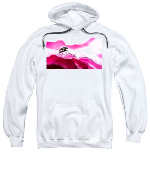 Fly Man's Floral Fantasy Sweatshirt