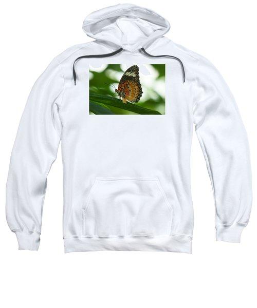 Flying High 4 Sweatshirt