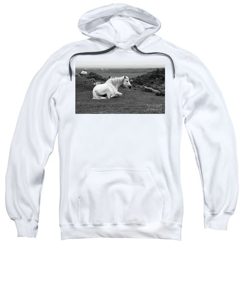 Fooggy Day Roundstone Sweatshirt