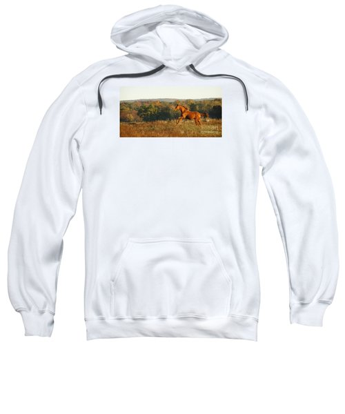 Freedom In The Late Afternoon Sweatshirt