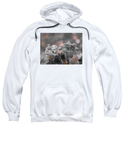 Freesia'a Without Colour Sweatshirt