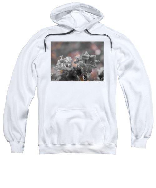 Freesia'a Without Colour Sweatshirt