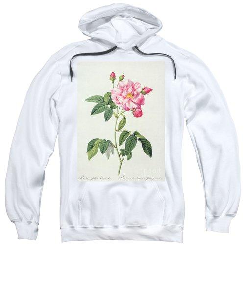 French Rose Sweatshirt