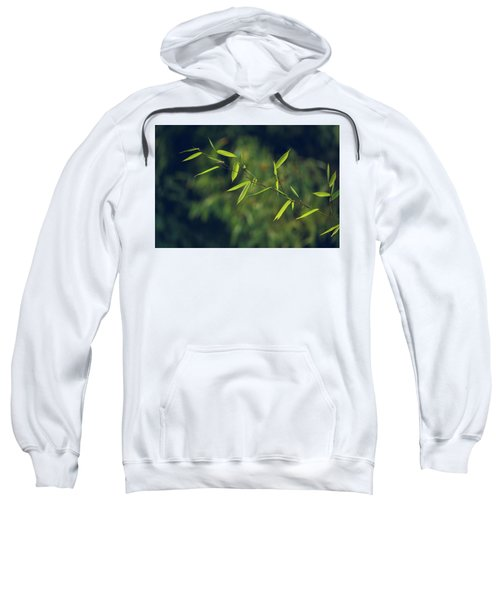 Stem Sweatshirt