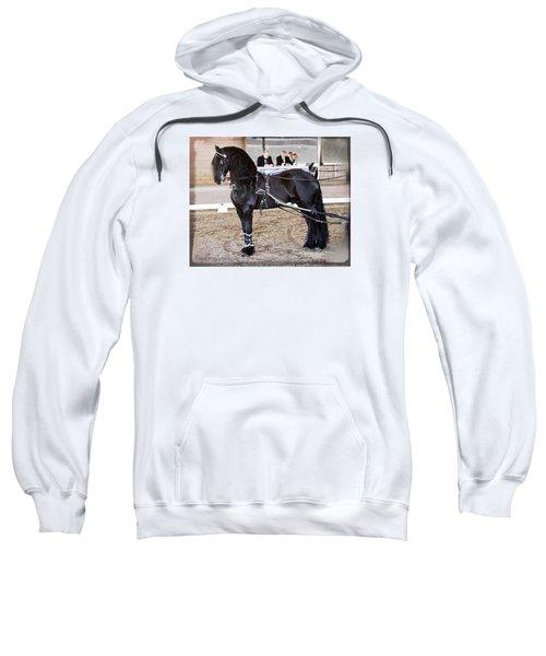 Friesian Stallion Under Harness Sweatshirt