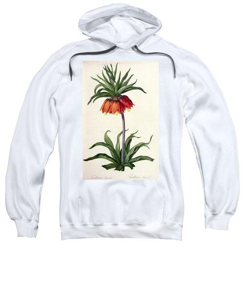 Fritillaria Imperialis Sweatshirt