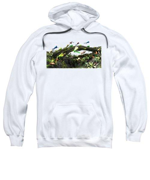 Frog Glen Sweatshirt by Methune Hively