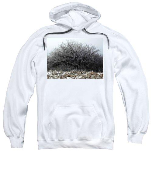 Frosted Elm Sweatshirt