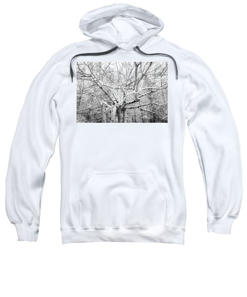 Frosted Sweatshirt
