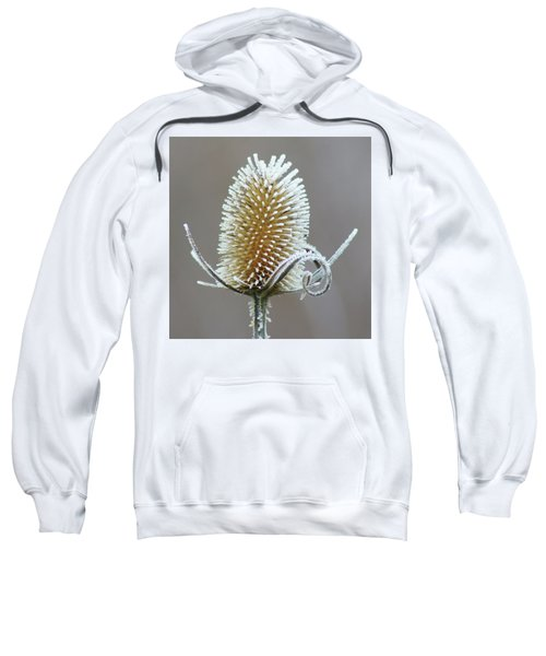 Frosted Teasel Sweatshirt