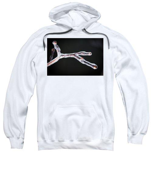 Frozen In Time Sweatshirt