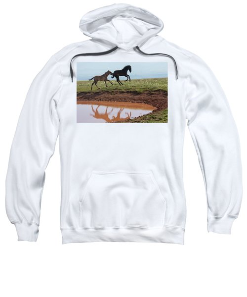 Fun In The Rockies- Wild Horse Foals Sweatshirt