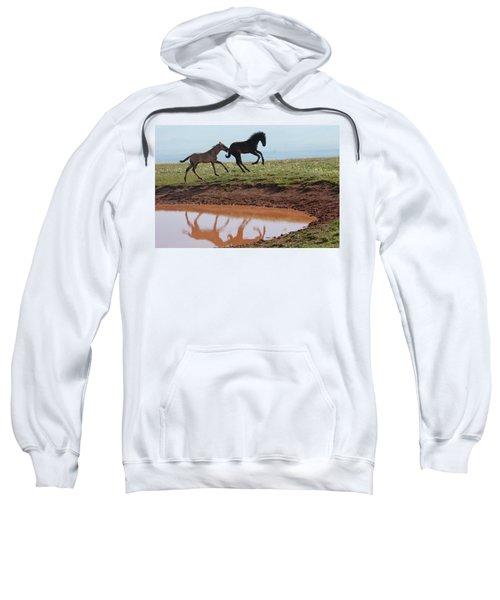 Fun In The Rockies- Wild Horse Foals Sweatshirt