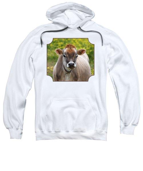 Funny Jersey Cow -square Sweatshirt by Gill Billington