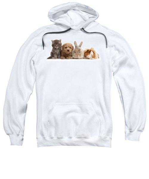 Gang Of Four Sweatshirt