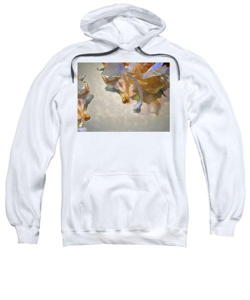 Garlic Skin Gossamer Sweatshirt