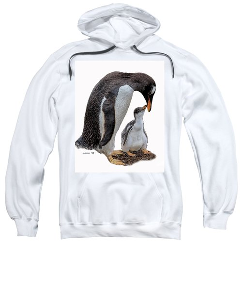 Gentoo Penguins Sweatshirt