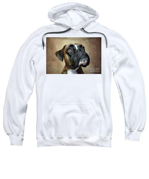 German Boxer Dog Sweatshirt