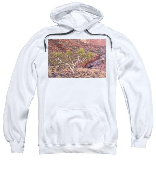 Ghost Gum Sweatshirt