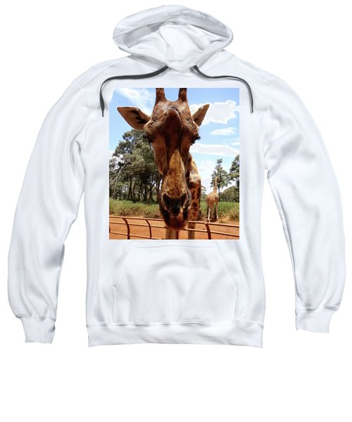 Giraffe Getting Personal 6 Sweatshirt