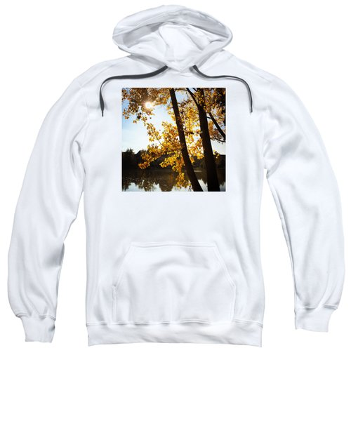 Golden Trees In Autumn Sindelfingen Germany Sweatshirt