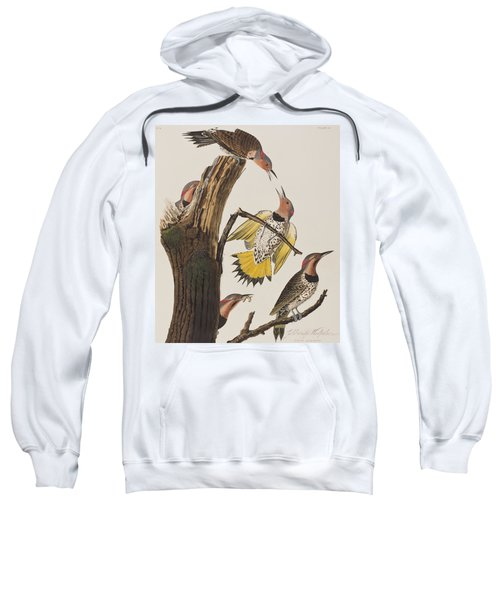Golden-winged Woodpecker Sweatshirt by John James Audubon