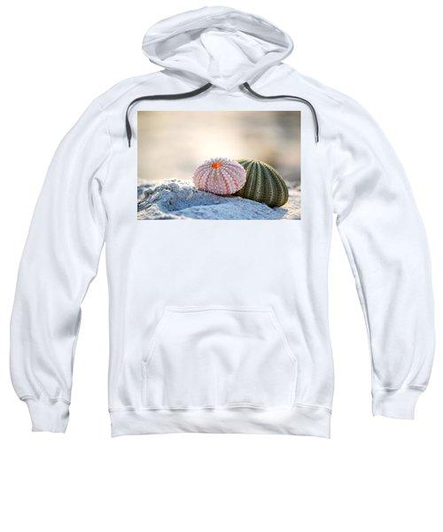 Gone Shelling Sweatshirt