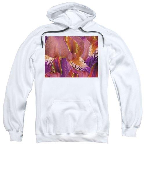 Gossameera 8 Sweatshirt