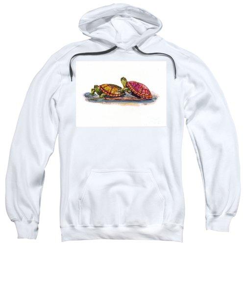 Spring Turtles Sweatshirt