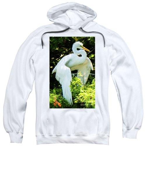 Great Egret Stretching Sweatshirt