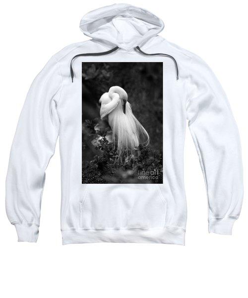 Zen Tree  Sweatshirt