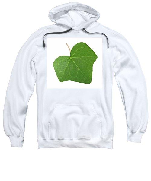Green Ivy Leaf Sweatshirt by GoodMood Art