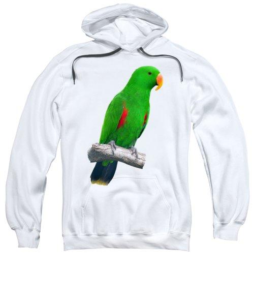 Green Parrot Sweatshirt