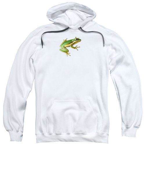 Green Tree Frog Sweatshirt by Sarah Batalka