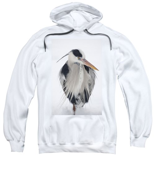 Grey Heron In The Snow Sweatshirt