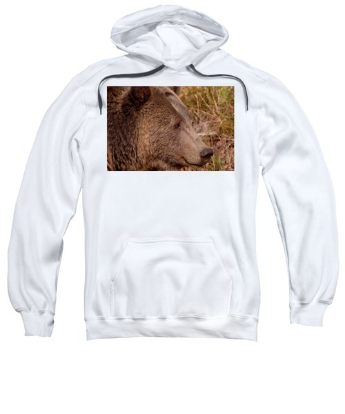 Grizzly Profile Sweatshirt