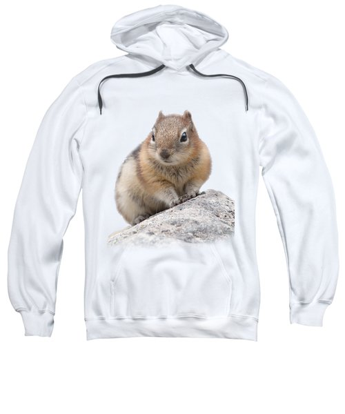 Ground Squirrel T-shirt Sweatshirt by Tony Mills
