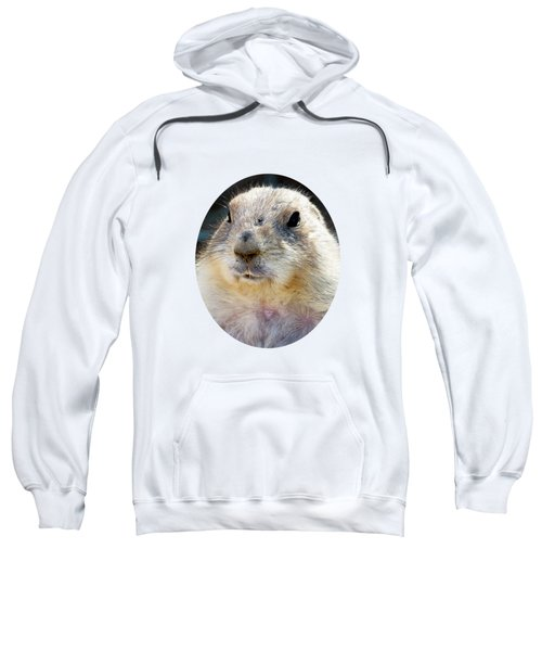 Ground Squirrel Portrait Sweatshirt by Laurel Powell