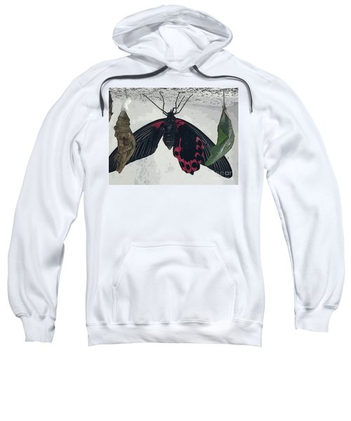 Hanging Around Sweatshirt