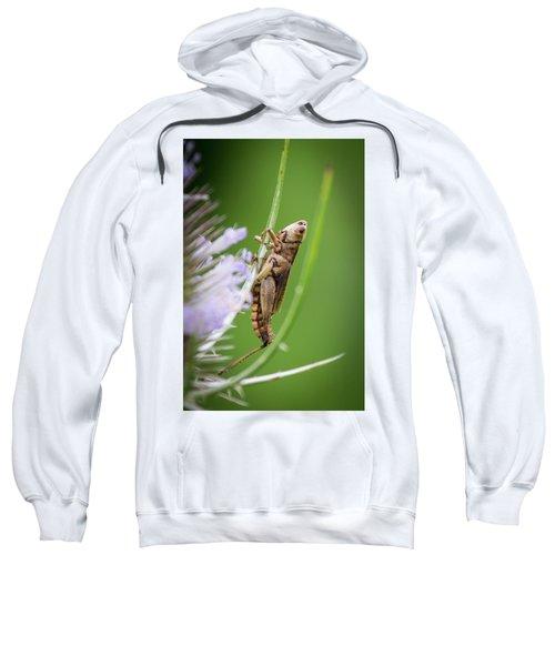 Hanging Out Sweatshirt