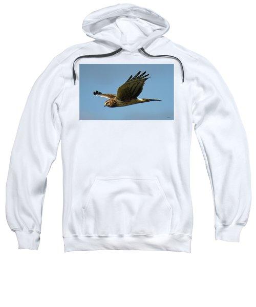 Harrier In Flight Sweatshirt